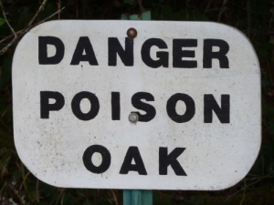 poison 4